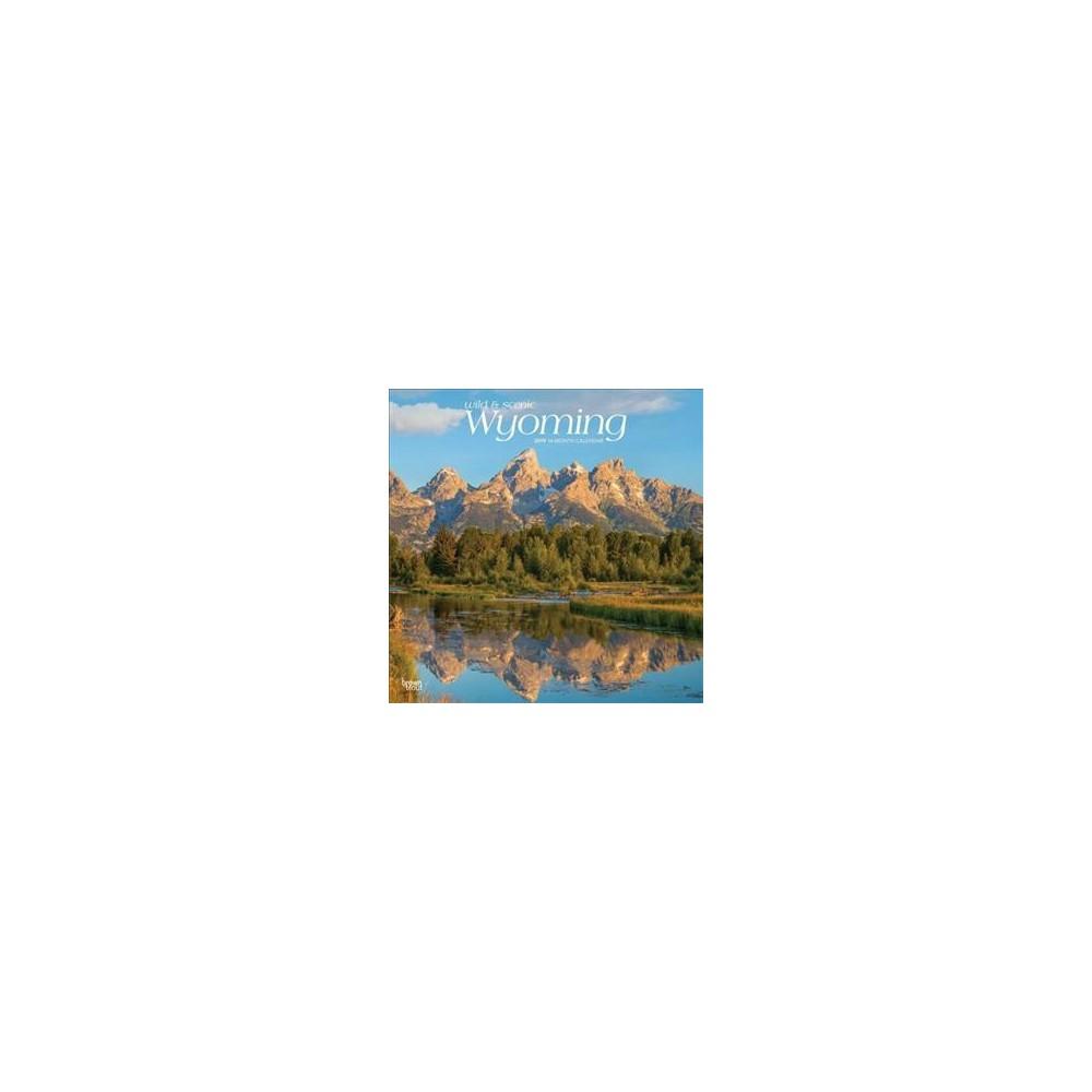 Wild & Scenic Wyoming 2019 Calendar - (Paperback)