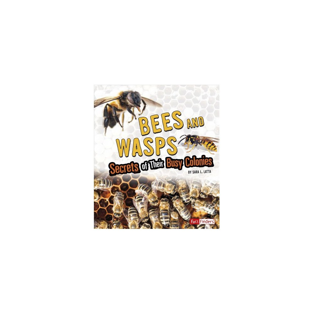 Bees and Wasps : Secrets of Their Busy Colonies - Reprint by Sara L. Latta (Paperback)