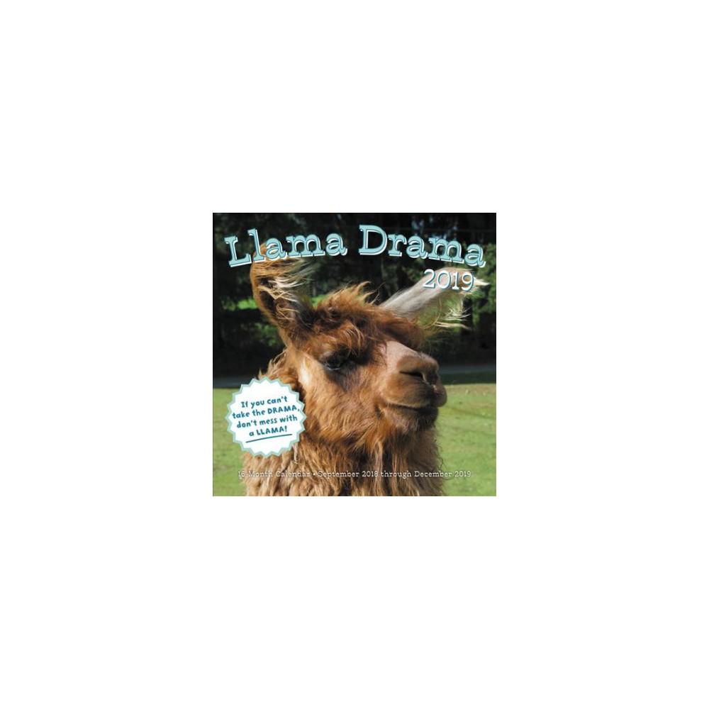 Llama Drama 2019 Calendar - (Paperback)
