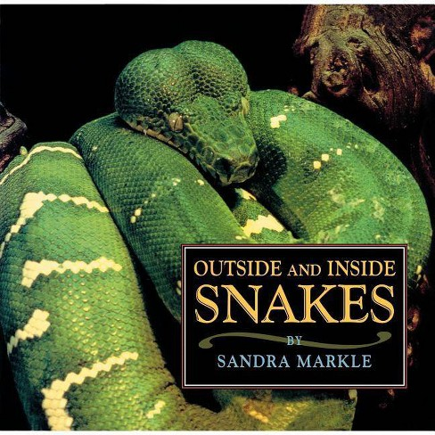 Outside and Inside Snakes - (Outside & Inside) by  Sandra Markle (Paperback) - image 1 of 1