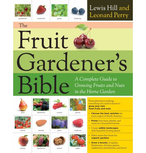 Fruit Gardener's Bible : A Complete Guide to Growing Fruits and Nuts in the Home Garden (Paperback) - image 1 of 1