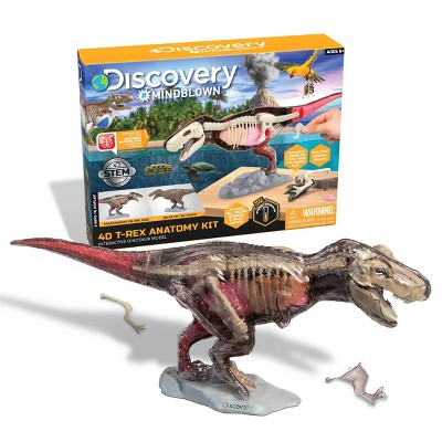 Discovery Kids Toy Anatomy T-Rex Kit Science Kit