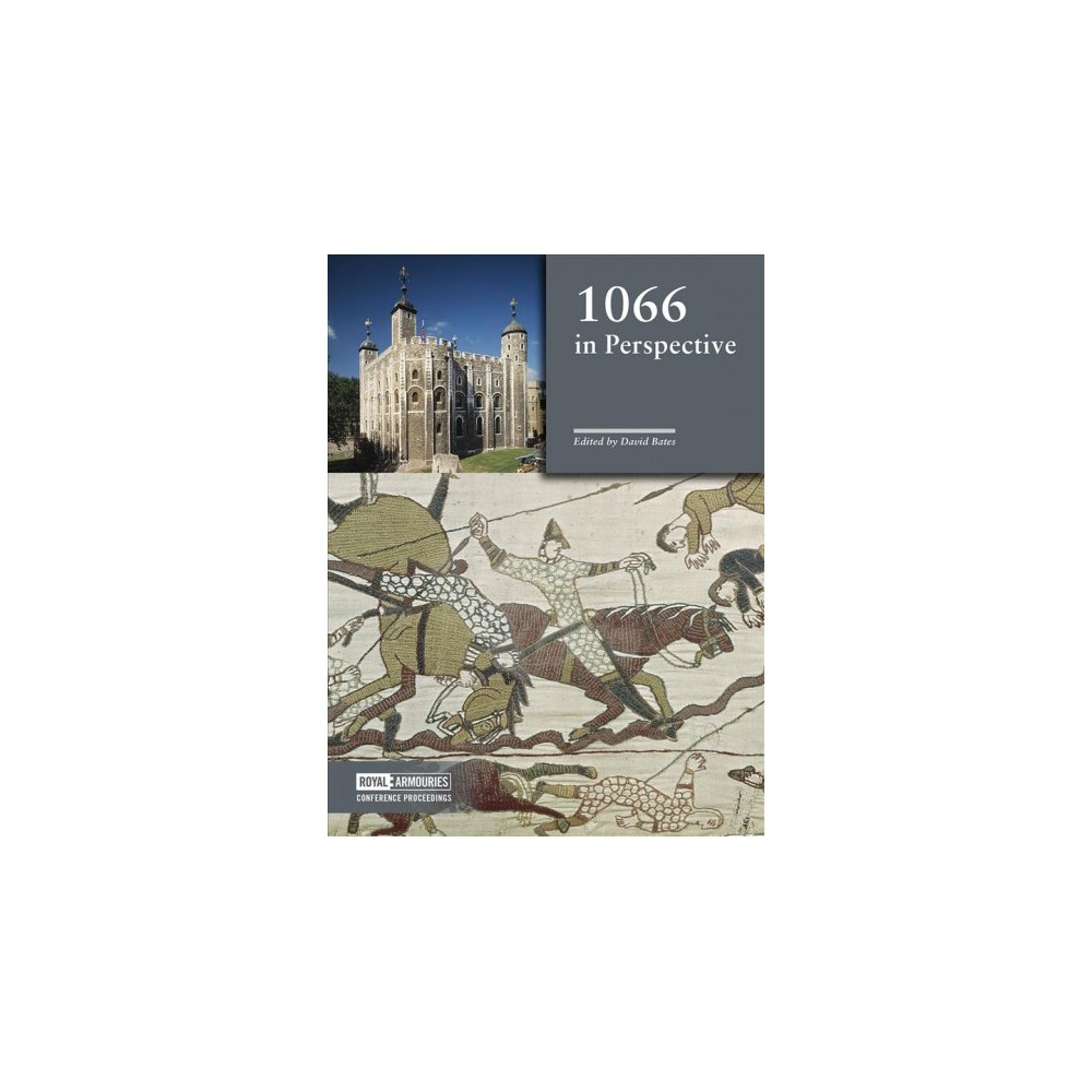 1066 in Perspective - (Hardcover)
