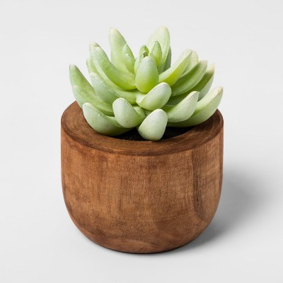 Faux Succulent in Wood Pot Plant - Threshold™