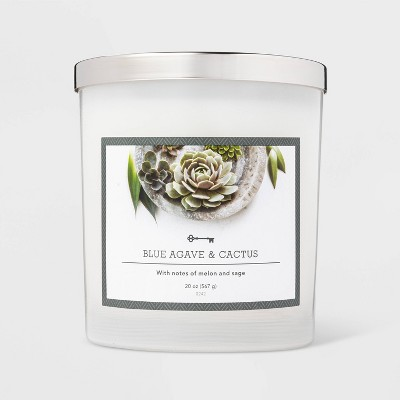 20oz Jar 3-Wick Blue Agave and Cactus Candle - Threshold™