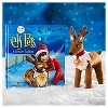 Elf Pets: A Reindeer Tradition - image 4 of 4