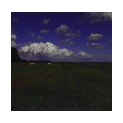 Biosphere - Hilvarenbeek Recordings (CD) - image 1 of 1