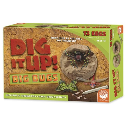 Dig it Up! Big Bugs - 12ct Clay Eggs - image 1 of 8
