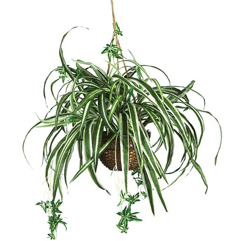 Nearly Natural Spider Hanging Basket Silk Plant Green - image 1 of 3