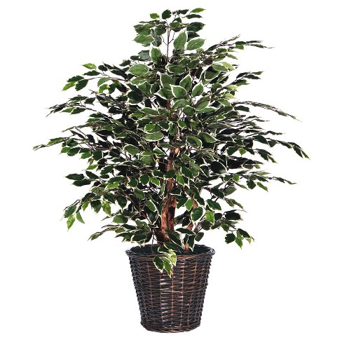 Artificial Variegated Plant Extra Full (4ft) Green/White - Vickerman - image 1 of 2