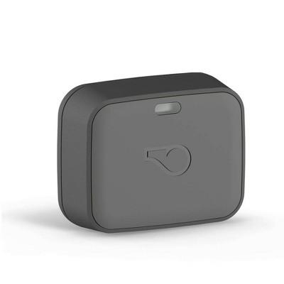Whistle GO Explore Pets GPS Tracker - Gray