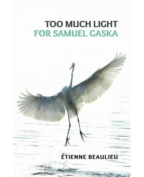 Too Much Light for Samuel Gaska (Paperback) (Etienne Beaulieu) - image 1 of 1