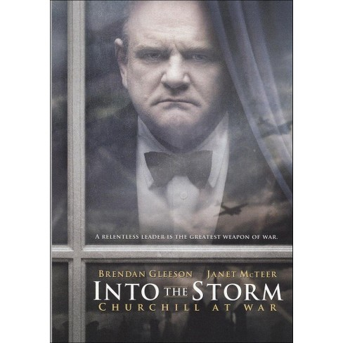 Into the Storm (dvd_video) - image 1 of 1