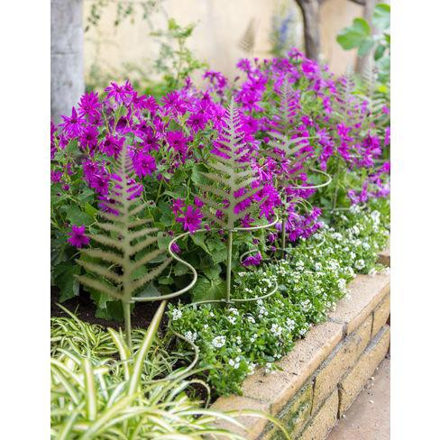 """Fern Linking Stakes 37"""", Set of 6 - GARDENER'S SUPPLY CO. - image 1 of 1"""