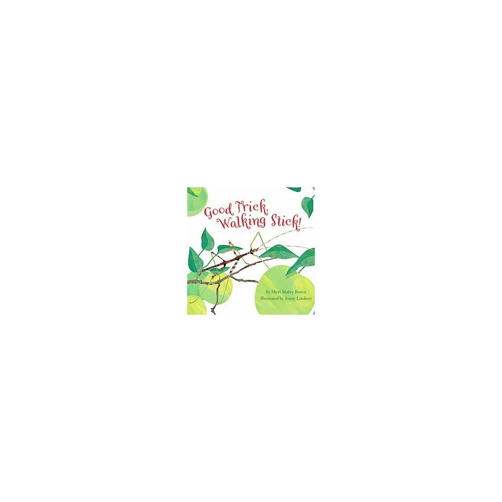 Good Trick Walking Stick (School And Library) (Sheri Mabry Bestor)