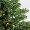 Northlight 3' Prelit Artificial Christmas Tree Canadian Pine - Clear LED Lights - image 3 of 3