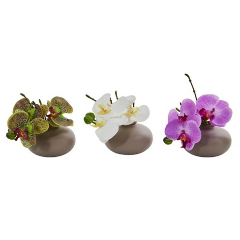 """7"""" x 6.5"""" 3pc Artificial Phalaenopsis Orchid Arrangement in Ceramic Pot Set - Nearly Natural - image 1 of 3"""