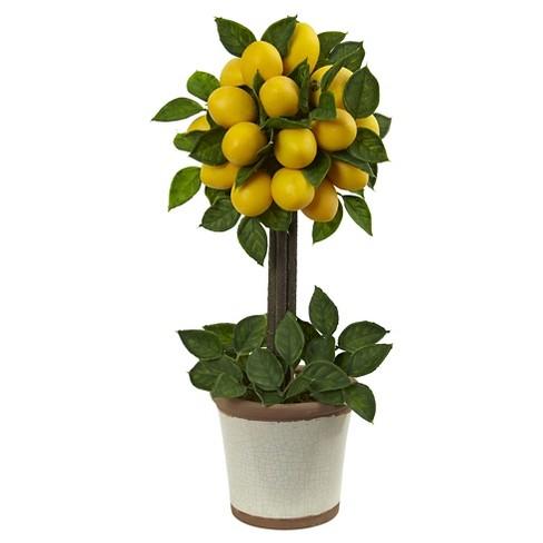 Lemon Ball Topiary Arrangement Yellow Target