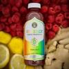 GT's Synergy Trilogy Organic Kombucha - 48 fl oz Bottle - image 2 of 3