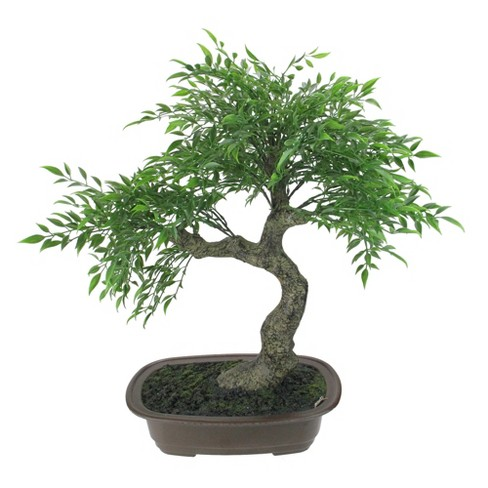 """Northlight 18"""" Bonsai Artificial Potted Plant - Green/Brown - image 1 of 3"""