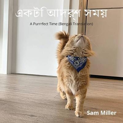 একটি আদর্শ সময় - by  Sam Miller (Paperback)