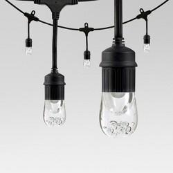 48' LED Caf Lights - 24ct - Enbrighten