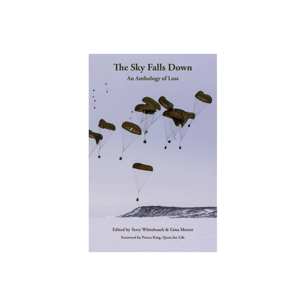 The Sky Falls Down By Terry Whitebeach Gina Mercer Paperback