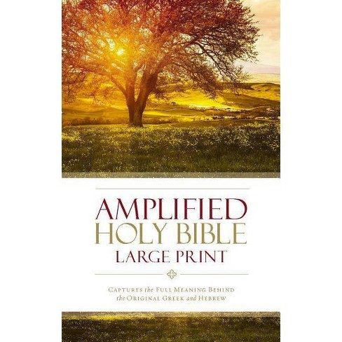 Amplified Bible-Am-Large Print - by Zondervan (Hardcover)