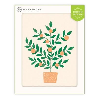10ct Blank Note Cards Orange Tree