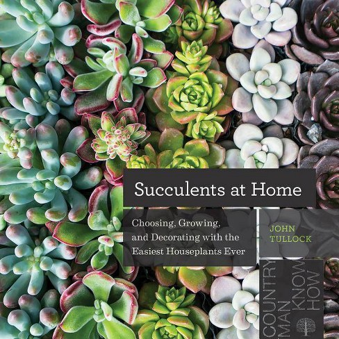 Succulents at Home - by  John Tullock (Paperback) - image 1 of 1