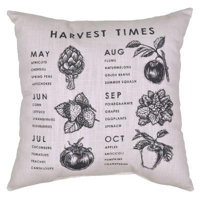 Outdoor Throw Pillow Square - Harvest Times - Threshold™