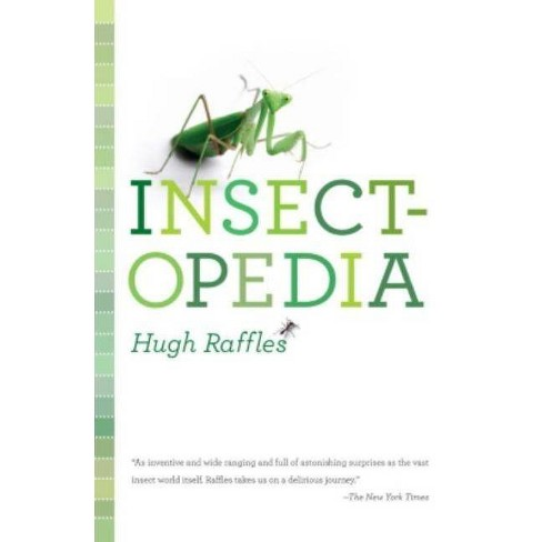 Insectopedia - by  Hugh Raffles (Paperback) - image 1 of 1