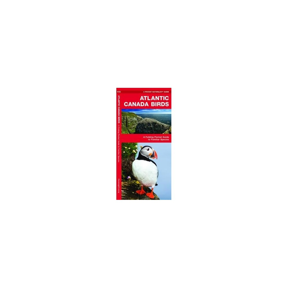 Atlantic Canada Birds : A Folding Pocket Guide to Familiar Species - Pmplt by James Kavanagh (Paperback)