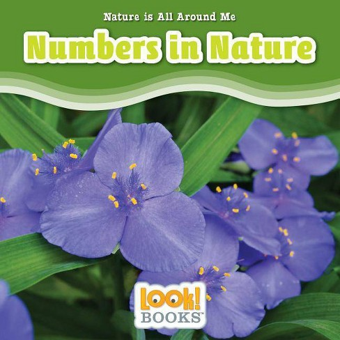 Numbers in Nature - (Nature Is All Around Me (Look! Books (TM))) by  Jennifer Marino Walters (Hardcover) - image 1 of 1