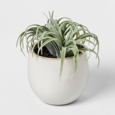 Faux Succulent in White Pot - Threshold™
