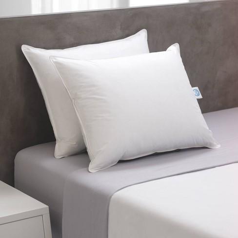 Standard 2pk Natural Prime Fiber Bed Pillow - Weatherproof - image 1 of 2