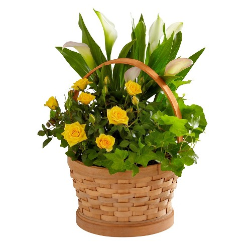 The FTD® Better Homes and Gardens® Cheerful Wishes Blooming Basket - image 1 of 1