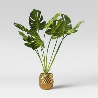 Potted Palm Leaf Plant - Opalhouse™