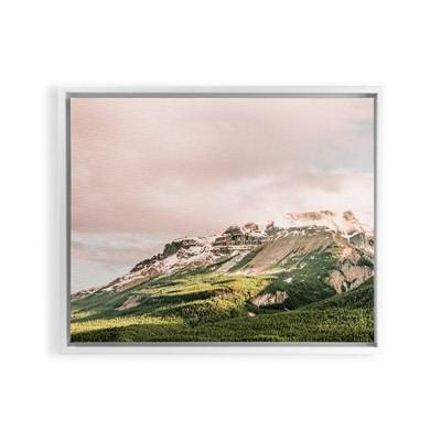 Magda Opoka Pink Sunset Framed Art Canvas Deny Designs Target