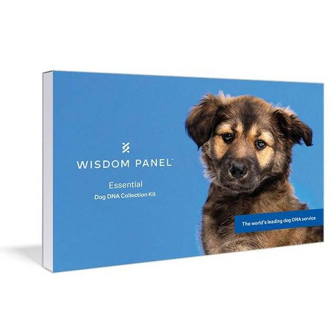 Wisdom Panel Essential for Ancestry Traits Dog DNA Test - image 1 of 4