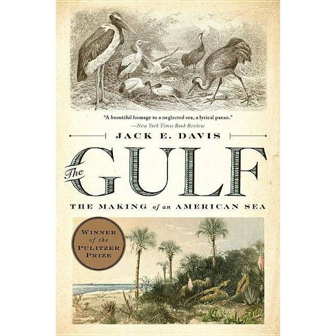 The Gulf - by  Jack E Davis (Paperback) - image 1 of 1
