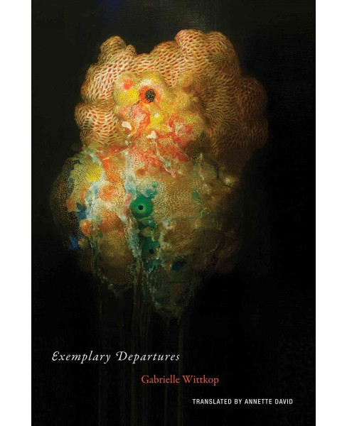 Exemplary Departures (Translation) (Paperback) (Gabrielle Wittkop) - image 1 of 1