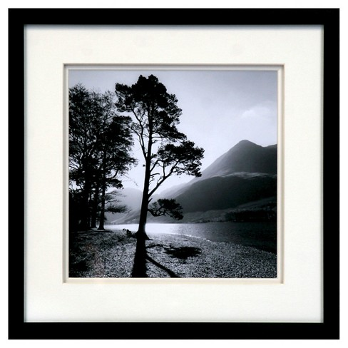 Framed Wall Poster -Trees 15x15 - image 1 of 1