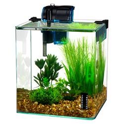 Water World Radius Desktop Aquarium Kit with Curved Corners from Penn-Plax
