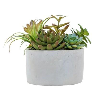 Artificial Succulent Arrangement in Cement Pot Green 7  - Lloyd & Hannah