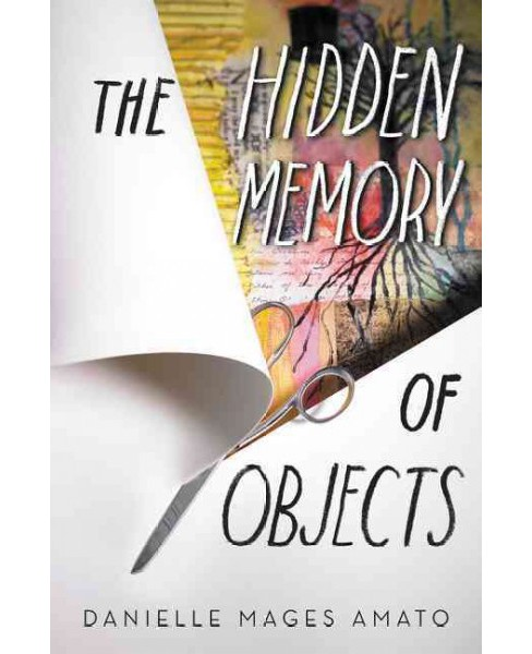 Hidden Memory of Objects (Hardcover) (Danielle Mages Amato) - image 1 of 1