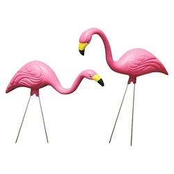 """22.25"""" Bloem's 2pk - Pink Flamingo"""