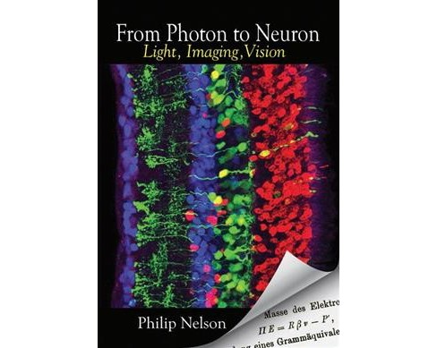 From Photon to Neuron : Light, Imaging, Vision (Paperback) (Philip Nelson) - image 1 of 1