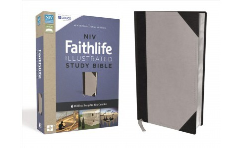 Faithlife Study Bible : New International Version, Gray / Black, Leathersoft, Biblical Insights You Can - image 1 of 1