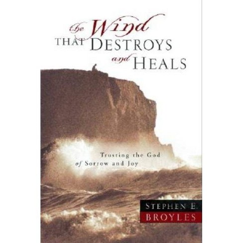 The Wind That Destroys and Heals - by  Stephen E Broyles (Paperback) - image 1 of 1